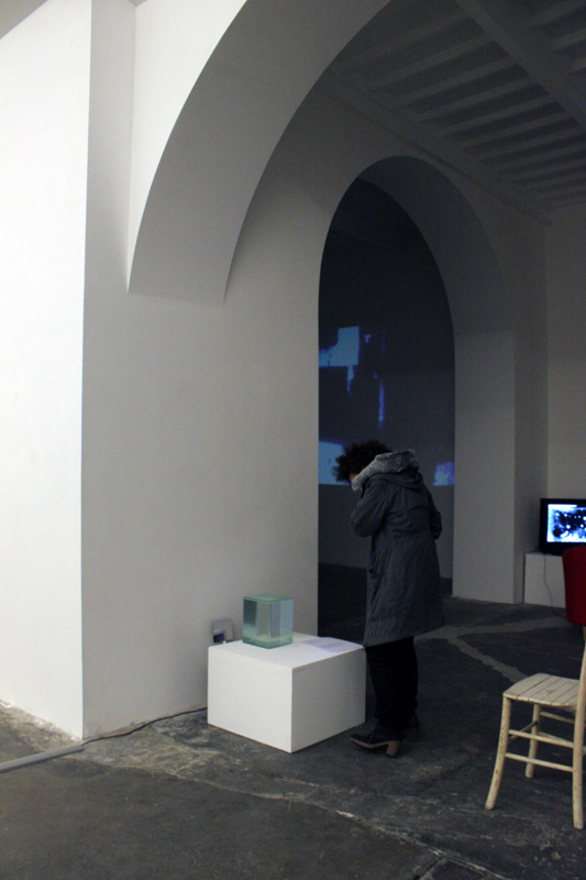mathis-Scalvini-Collier