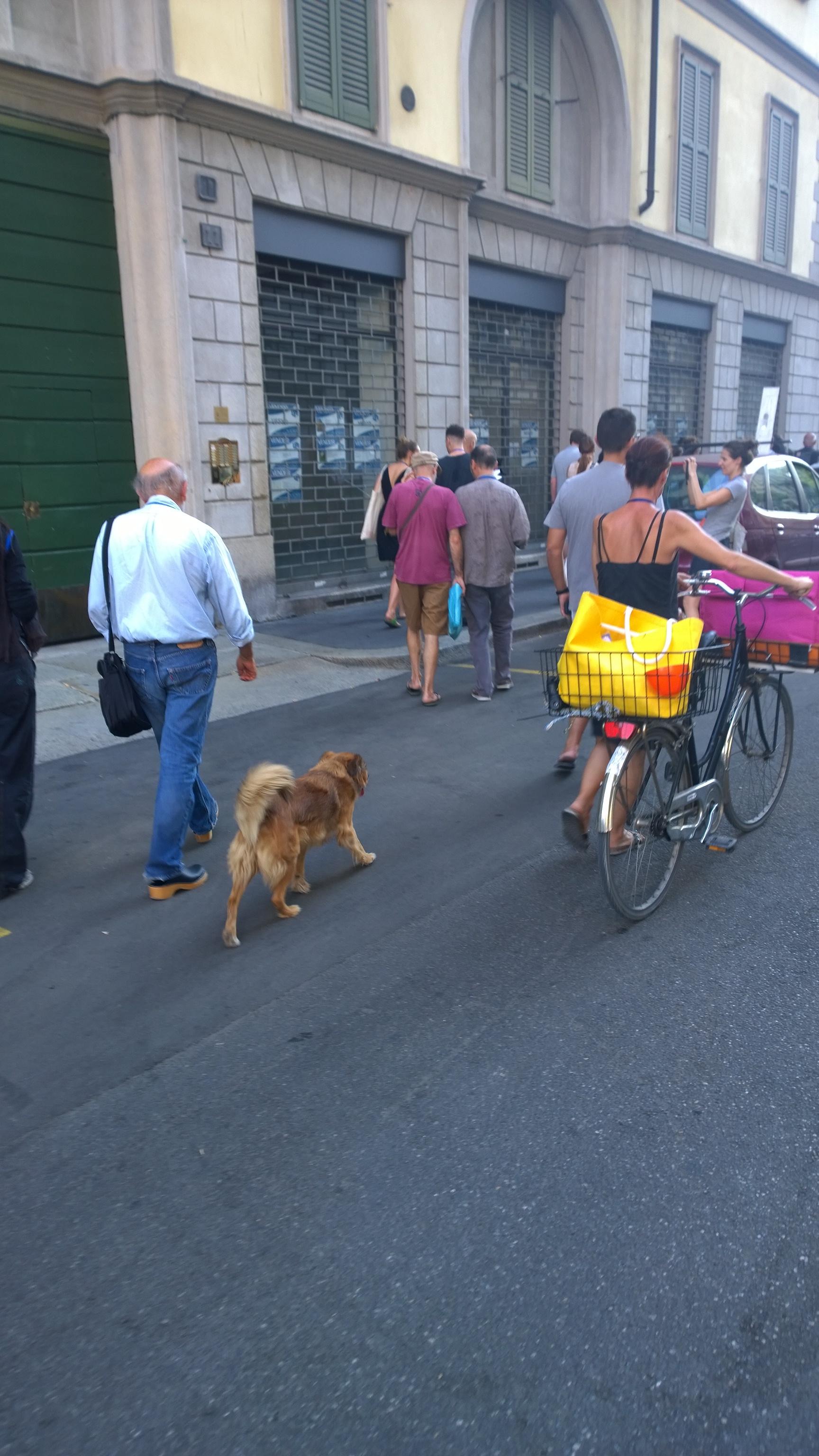 Via Canonica_conferenza passeggiando_ Verso parco Sempione
