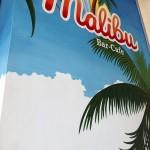 Al Bar Malibù! Conferenza Passeggiando - LanaLive_2018