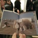 Diego Zuelli - elefante combinatorio